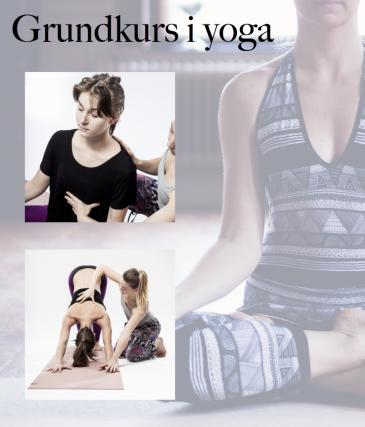Grundkurs Yoga