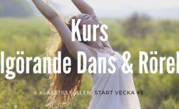 Kopia av Yoga mot stress & utbrändhet