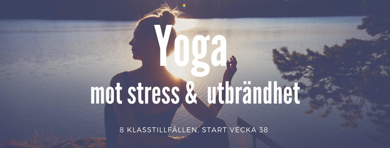 Yoga mot stress & utbrändhet